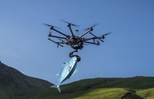 Can You Use A Drone for Fishing?